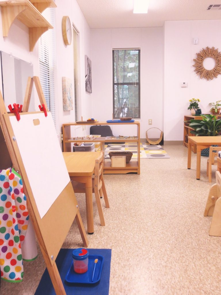 The Toddler Classroom